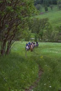 horseback riding in the driftless