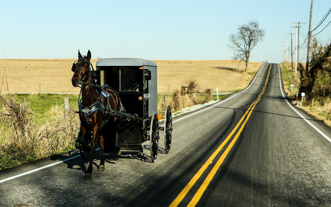 Amish Country of the Driftless